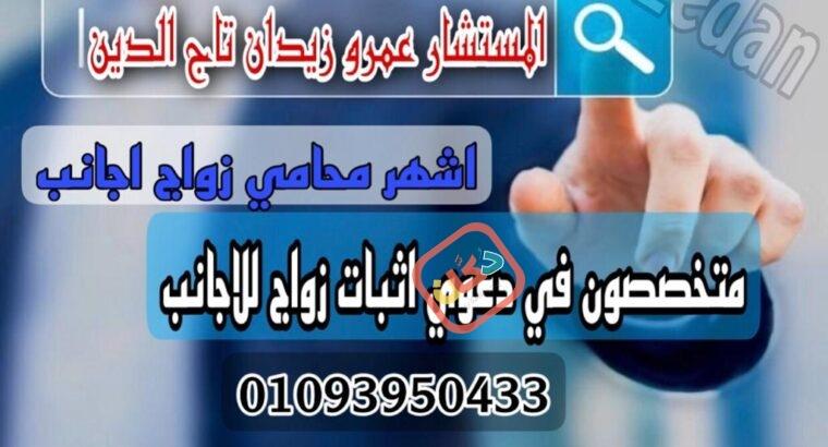 محامي أقامة الاجانب في مصر